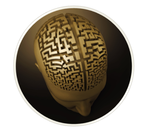 brain_maze.png