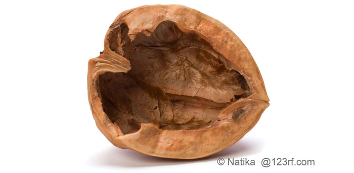 walnut_shell_web.jpg